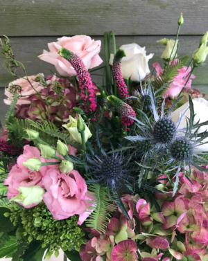 Wild Thistle Vase or cut bouquet in Northport, NY | Hengstenberg's Florist