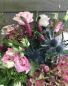 Wild Thistle Vase or cut bouquet