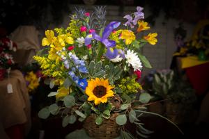 Wild Woman - Womens Month Special  in Farmville, VA   Rochette's Florist