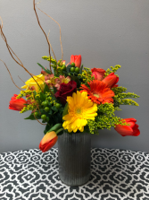 Willow Four Seasons Series