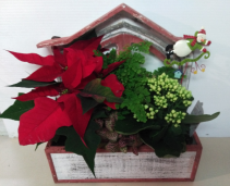 Window Box Holiday Planter