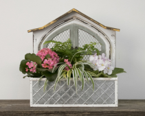 Window Box Planter  Blooming Plants