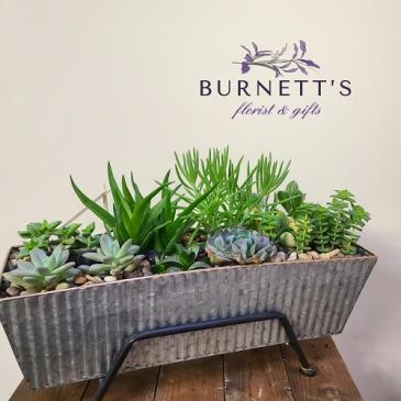 Window box succulent planter  Planter