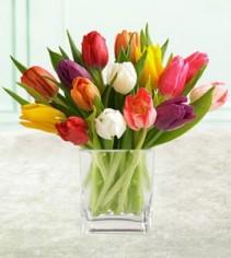 Windswept Tulips Arrangement
