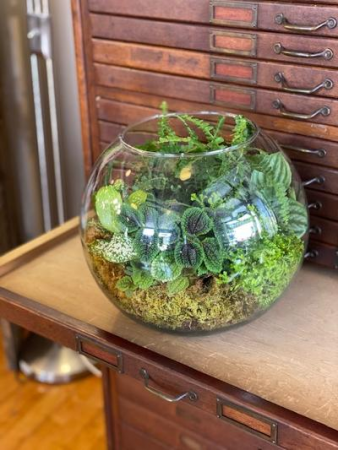 Wine & Design Class April 28 @6pm Terrarium Hands On Class