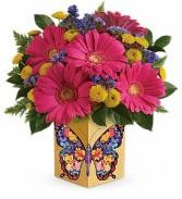 Forever Love Butterfly Cube Vase