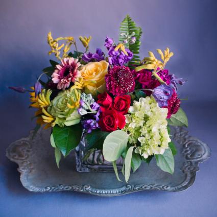 Winter Color Please  Vase Arrangement, Semi Compact