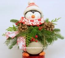 Winter Fun Penguin all round