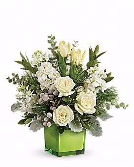Winter Pop Bouquet Arrangement