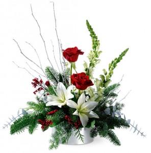 winter seasons christmas in keystone heights fl flower petals rh flowerpetalsinc com