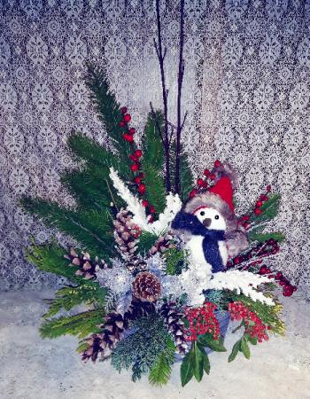Winter Snowbird Design
