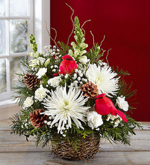 Winter Songbird™  in Valley City, OH | HILL HAVEN FLORIST & GREENHOUSE