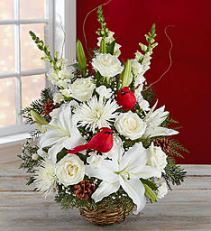 Winter Songbird™ Arrangement