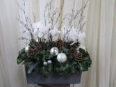Winter Sparkle Plant Arrangement