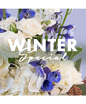 Winter Special Designer's Choice in Cary, NC | GCG FLOWERS & PLANT DESIGN