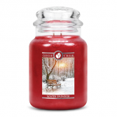 Winter Splendor Large Jar Candle  candle gift