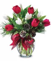 Winter Tulips Arrangement