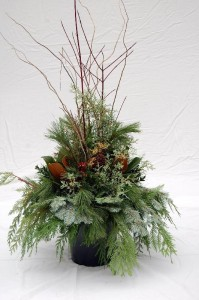 WINTER WELCOME Evergreen Urn Drop In in Port Stanley, ON | FLOWERS BY ROSITA