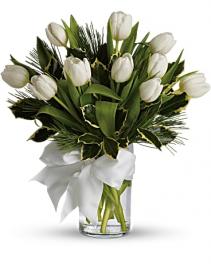 Winter White Tulips & Pine
