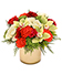 Vibrant Red Poinsettia Flowering Plant