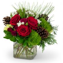 Wintertime Blooms Arrangement