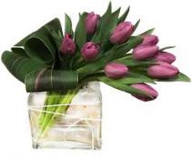 Wishing Tulips 10 tulips red, purple or pink