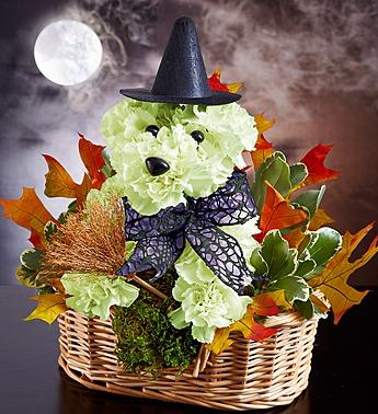 Witchy Pooch™ '15 Arrangement