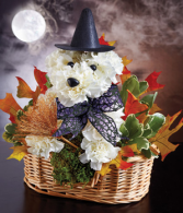 Witchy Pooch™ '17 Arrangement