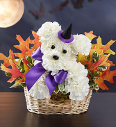 Witchy Pooch Floral Arrangement
