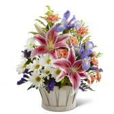 Wondrous Nature Basket - C12-4400