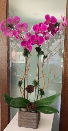 WOOD BOX ORCHID ELEGANT MIXTURE OF FLOWERS