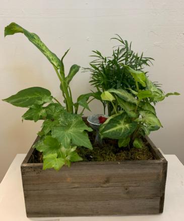 Wooden box with plants and a birdbath planter