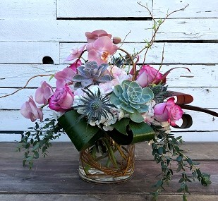 Woodland Orchids and Succulents