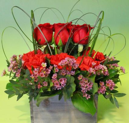 Woodland Rose Garden        ***BEST SELLER*** Roses