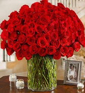 Wow... for her Roses