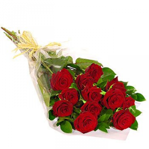 LONG STEM 50CM ROSES DOZEN WRAPPED ROSES in Regina, SK | Regina Florist