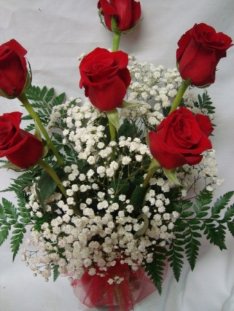 """Best Seller"" Six Red Roses arranged in a  vase with baby's breath or wax flower."