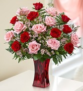 6 Red and 6 Pink Roses arranged in a vase with filler!  (VASE MAY BE RED OR CLEAR)