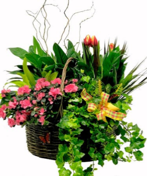 Xtra large Garden Basket   in Ozone Park, NY | Heavenly Florist