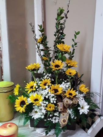 Y & W daisy love Onesided with daisy mums & bb