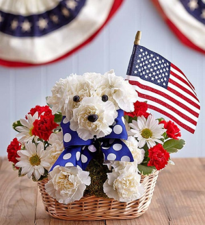 Yankee Doodle Doggie™ 3D 4th of July / Patriotic in Las Vegas, NV | All In Bloom