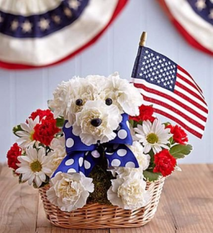 Yankee Doodle Doggie  in Valley City, OH | HILL HAVEN FLORIST & GREENHOUSE