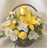 Yellow and white wicker basket Small Basket