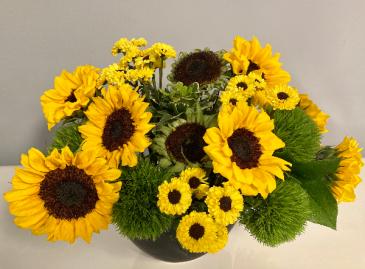 Yellow brilliance Floral Arrangement