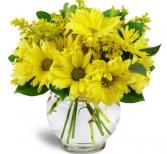 Yellow Daisy Bouquet  Vase