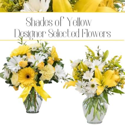 Yellow--Designer's Choice