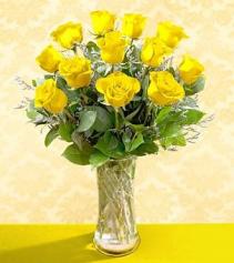 Yellow Dozen Roses Roses