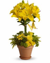 Yellow Fellow Fresh Arrangement