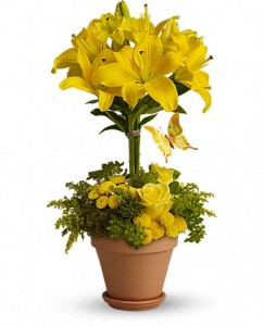 Yellow Fellow Fresh Arrangement