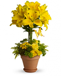 Yellow Lilies And Rose Topiary